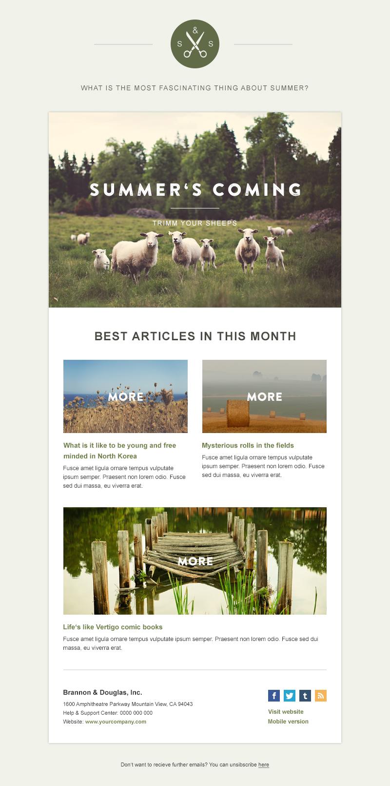 template newsletter 3