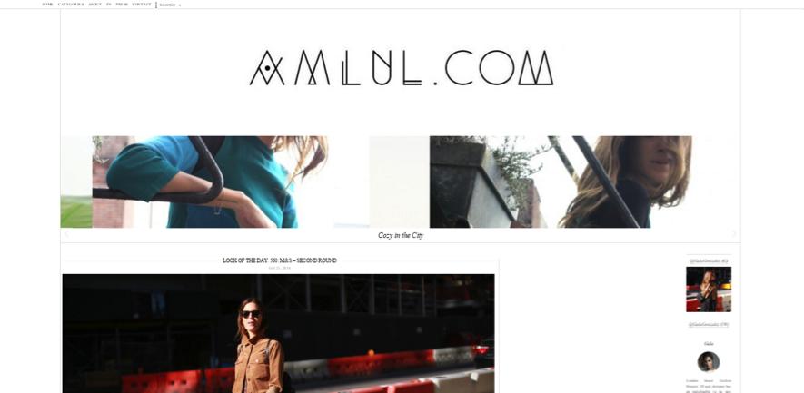 blogueras de moda: Amlul