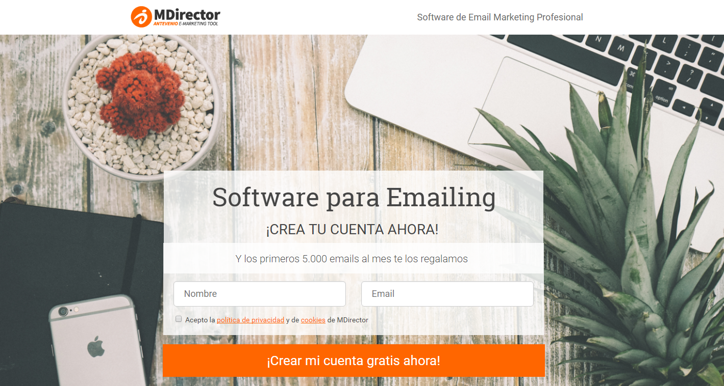 secretos de email marketing: formulario perfecto