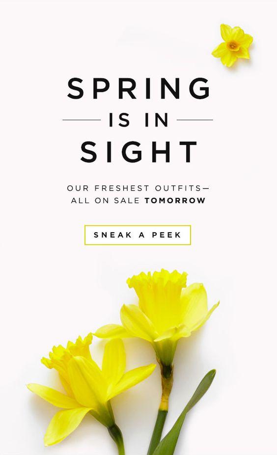 newsletter per vendere di più un primavera
