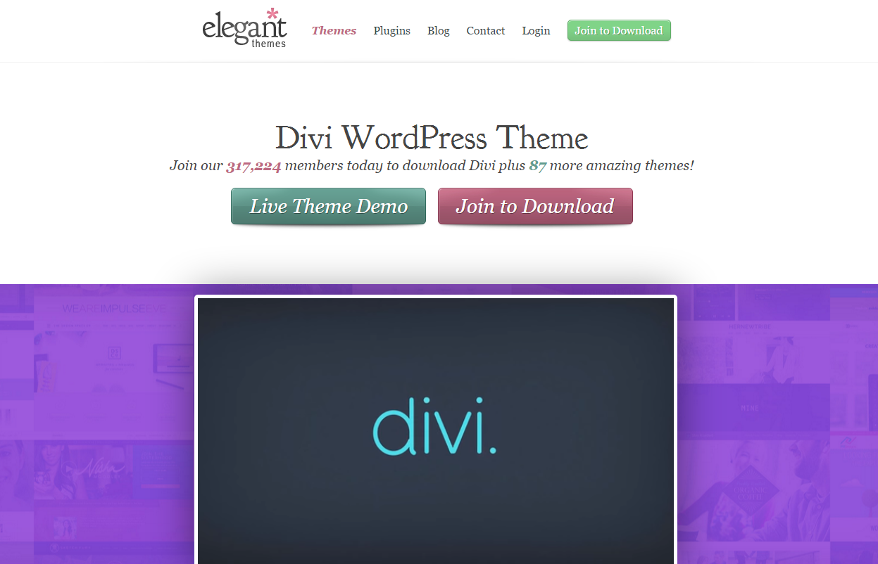 best WordPress templates: Divi