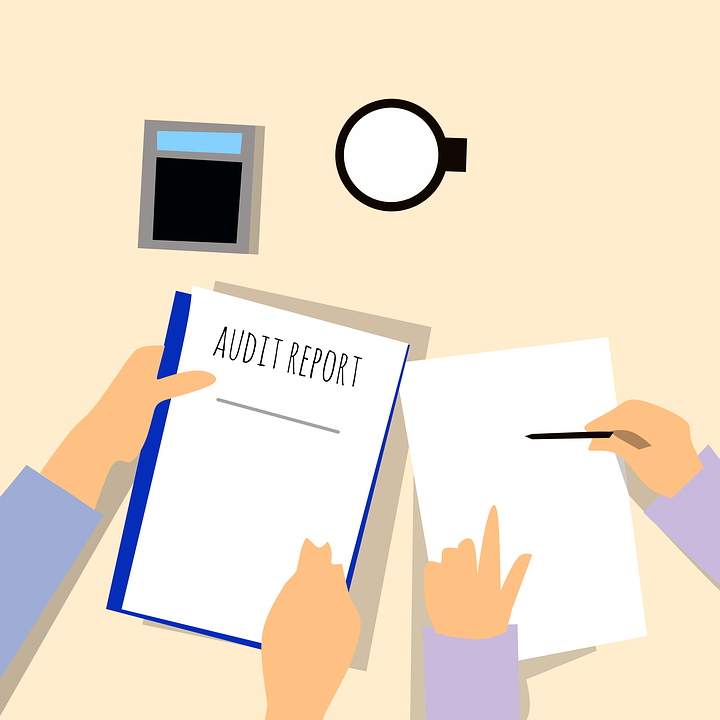 Realizar auditorías