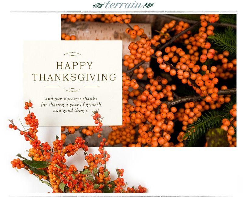 Newsletter de acción de gracias