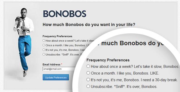 visitas al blog con email marketing preferencias