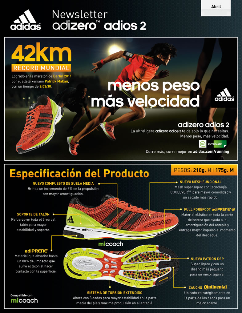Newsletter Adidas