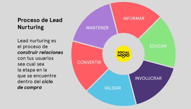 Nutrición de leads
